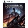 Kép 1/6 - Terminator: Resistance Enhanced (PS5)