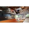 Kép 4/6 - Tony Hawk's Pro Skater 1+2 (XSX | XONE)