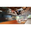 Kép 4/6 - Tony Hawk's Pro Skater 1+2 (PS5)