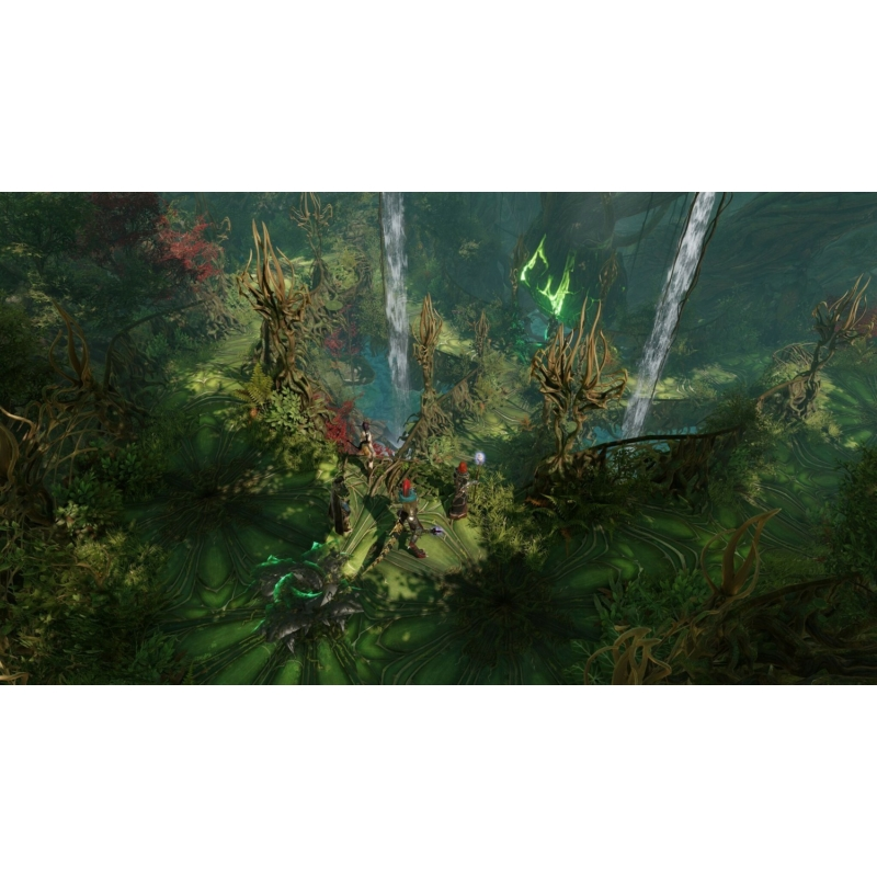 Divinity: Original Sin 2 Definitive Edition (Xbox One)