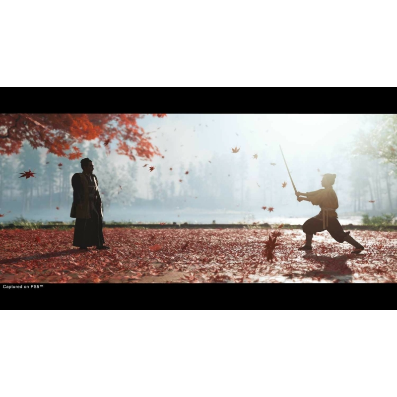 Ghost of Tsushima Director's Cut (PS4)