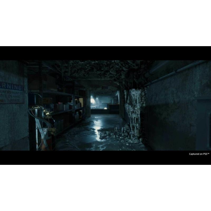 Death Stranding Director's Cut (PS5)